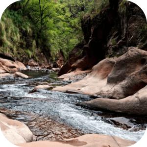 Río Yala